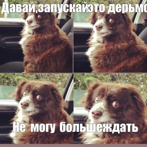 Создать мем: bitch meme, дерьмо, включай уже это дерьмо