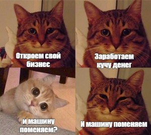 Create meme: the meme with the cat and the cat, cat, cat meme