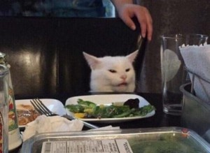 Create meme: meme of the year cat at the table, cat at the table , cat at the table photo, meme