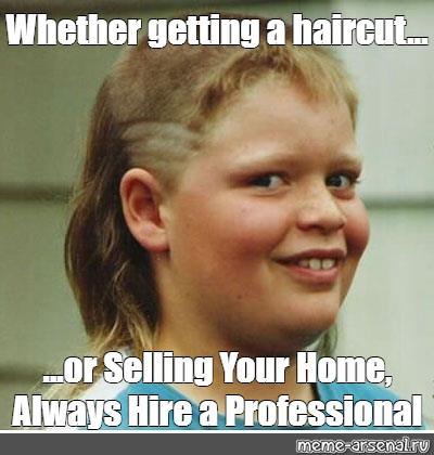 """Meme: """"Whether getting a haircut... ...or Selling Your Home, Always Hire a Professional"""""""