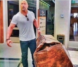 Create meme: the rock with a bag, male , only the most necessary