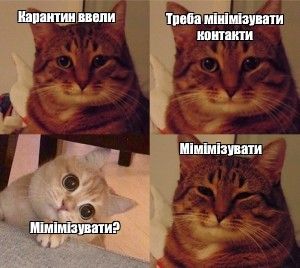 Create meme: the meme with the cat and the cat, cats , cat