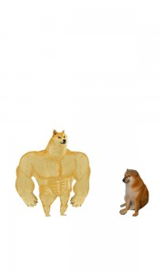 Create meme: strong doge, inflated doge