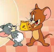 Создать мем: tom and jerry mouse about the house, tom and jerry gif, tom & jerry raider