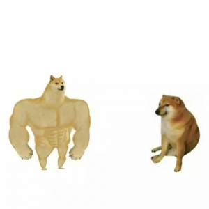 Create meme: dog and chims, doge , cheems doge