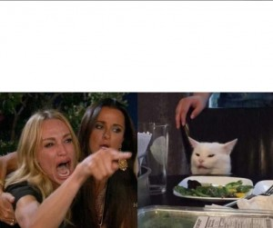 Create meme: screaming woman cat, cat at the table photo, meme, a woman yells at a cat meme