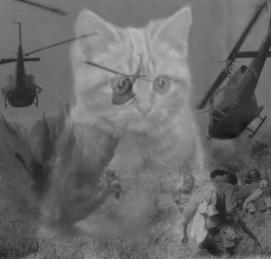 Create meme: Vietnam flashback cat