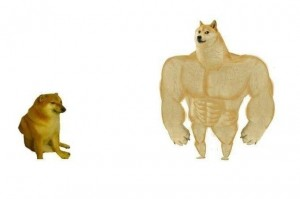Create meme: muscular dog, Jock the dog and you learn, doge Jock
