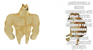 Create meme: strong doge, dog and chims, Shiba inu