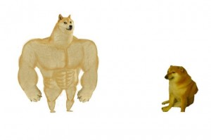 Create meme: muscular dog, inflated doge, doge Jock