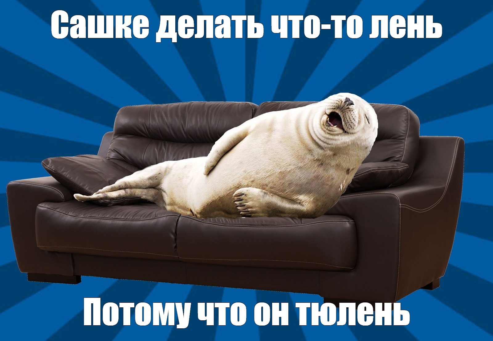 Create Meme Use Laziness And Analytics New Sofa Pictures