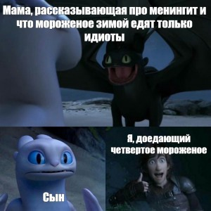 Create meme: How to train your dragon, how to train your dragon 3 memes, meme with toothless and a day fury
