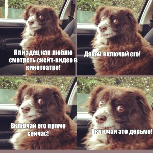 Create meme: dog meme , download this shit meme with dog, the dog in the car, crank that shit