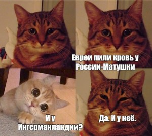 Create meme: cat meme, memes cats, memes with cats