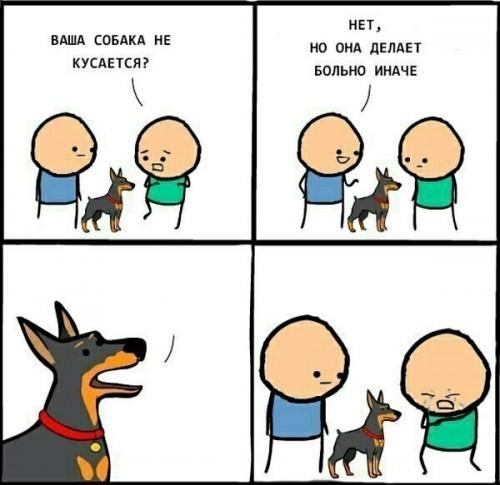 Создать мем: комиксы мемы, моя собака делает больно иначе евонный, ваша собака кусается нет она делает больно иначе шаблон