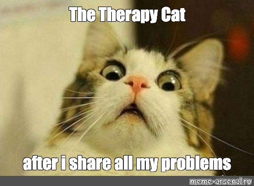 Meme The Therapy Cat After I Share All My Problems All