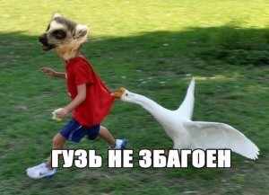 Создать мем: money meme, laugh, funny animals