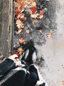 Создать мем: rainy day, sweater weather, fall leaf