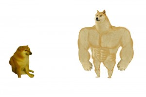 Create meme: doge meme Jock, Jock the dog and you learn, doge Jock
