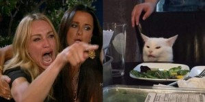 Create meme: the cat table meme, cats , a woman yells at a cat meme