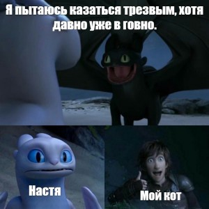 Create meme: toothless and day, toothless and day furies, dragons toothless and day fury