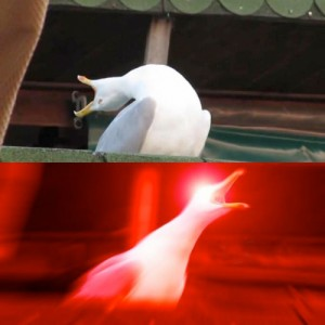 Create meme: Omega screaming Seagull