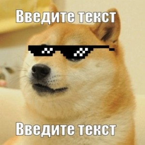 Create meme: dog with glasses meme, doge , this fiasco bro pictures
