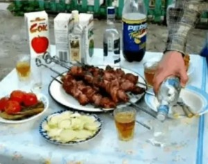 Create meme: pictures of the picnic kebab funny, feast on nature, kebab and vodka photos