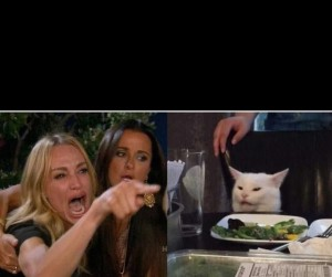 Create meme: two girls shout at the cat meme, woman yelling at cat meme, a woman yells at a cat meme
