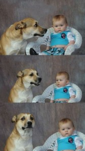 Create meme: The dog and the kid
