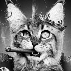 Создать мем: cat, кошки, кот