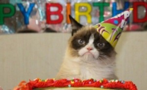 Create meme: grumpy cat , happy birthday mem, meme cat