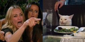 Create meme: a woman yells at a cat meme, white cat table meme, woman yelling at cat meme