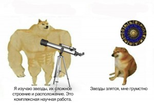 Создать мем: doge мем, swole doge vs, doge