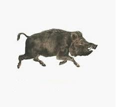 Создать мем: наклейка бык, собака, кабанчик