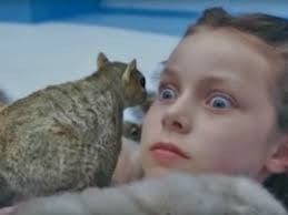 Create meme: Charlie and the chocolate factory squirrel, Charlie and the chocolate factory Veruca and protein, Charlie and the chocolate factory the girl with the squirrels