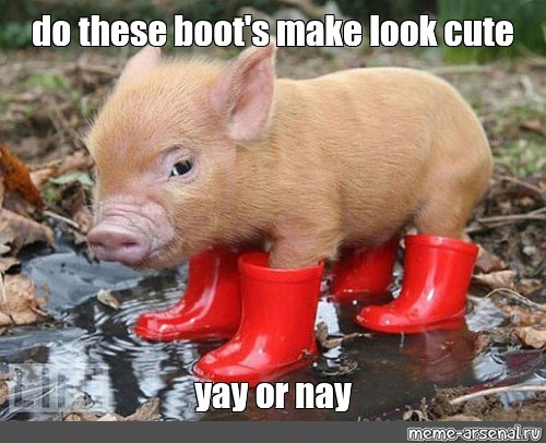Meme Do These Boot S Make Look Cute Yay Or Nay All Templates Meme Arsenal Com Find and save images from the cute memes collection by lizzie (an9eiic) on we heart it, your everyday app to get lost in what you love. look cute yay or nay