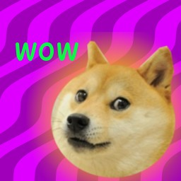 Create meme: ava top doge, photo doge meme, doge png