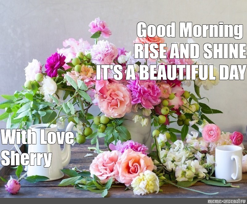 Meme Good Morning Rise And Shine Its A Beautiful Day With Love