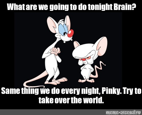 """Meme: """"What are we going to do tonight Brain? Same thing we do every night,  Pinky. Try to take over the world."""" - All Templates - Meme-arsenal.com"""