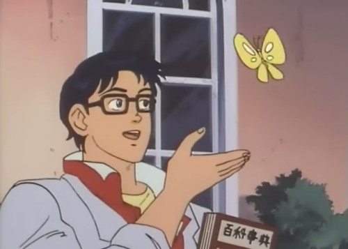 Create meme: This butterfly