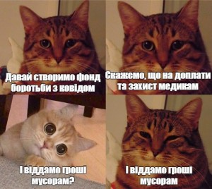 Create meme: the meme with the cat and the cat, seals , memes with cats