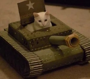 Create meme: cats fighting machine, tank for the cat out of the box, tanker in the tank frenzy