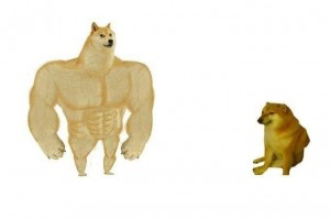 Create meme: inflated doge meme template, muscular dog, doge Jock